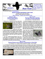 Bexar tracks : the newsletter of the Bexar Audubon Society, Vol. 29, No. 02