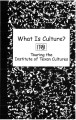 What is culture: Touring the Institute of Texan Cultures