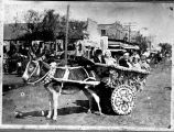 Children in donkey cart decorated for parade, Del Rio, Texas, ca. 1910s