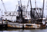 Shrimp boats and dock of the Joe Grasso Company, Galveston, Texas, 1975transparency.