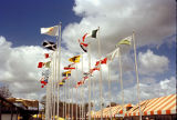 Flags in front of the Institute of Texan Cultures during HemisFair'68
