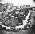 Alamo Plaza, looking north from atop the Gallagher Building, ca. 1893